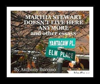 Martha Stewart Doesn't Live Here Anymore and other essays by Anthony Buccino