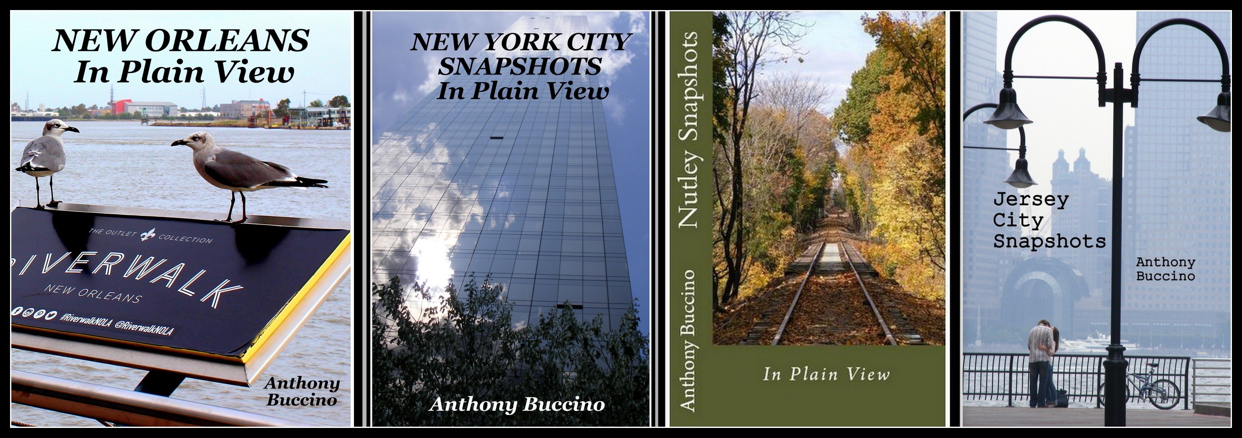 Photo collecctions, NOLA in Plain View, NYC In Plain View, JC Snapshots, Nutley Snapshots, photo books by Anthony Buccino