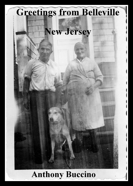 Greetings-from-Belleville-NJ-Collected writings by Anthony Buccino