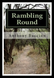 Rambling Round-Inside and Outside at the Same Time by Anthony Buccino