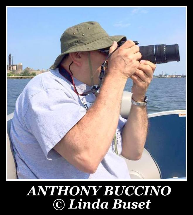 Anthony Buccino, photo by Linda Buset